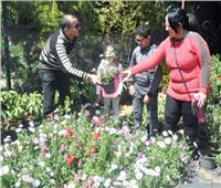 معرض الزهور .. ورد وعصافير وأسماك ومنافع أخرى