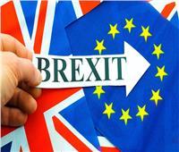شباب «شبه عراة» في البرلمان البريطاني احتجاجًا على سياسات الحكومة بشأن «بريكست»