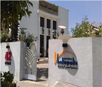 مكتبة مصر الجديدة للطفل تحتفل بيوم اليتيم طوال يوم غد السبت