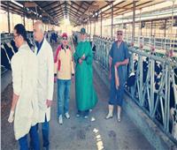 «البحوث الزراعية» تنتهي من أعمال القافلة البيطرية المجانية بقنا