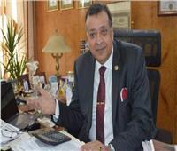 جمعية الغاز: مصر تشهد ثورة صناعية غير مسبوقة و«التعديلات الدستورية» تدعمها