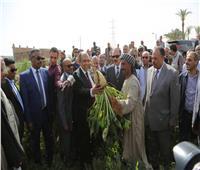 صور| وزير الزراعة يتفقد زراعات القمح والبنجر والفول بمنفلوط