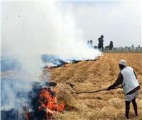 «البيئة» تطرح إستراتيجية لتعظيم الاستفادة من المخلفات الزراعية