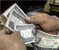 فيديو| يمنى الحماقي: زيادة الأجور والمعاشات مؤشر إيجابي لتحسن الاقتصاد