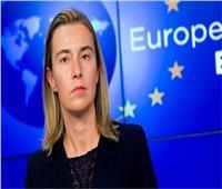 الاتحاد الأوروبي يدعو لهدنة إنسانية في ليبيا
