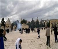 بالتزامن مع انتخابات الكنيست.. مستوطنون يقتحمون المسجد الأقصى