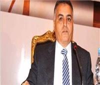 عمران: مصر نجحت في جذب استثمارات القطاع الخاص