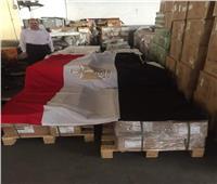 وصول أول شحنة أدوية مصرية لدولة «بوروندي»