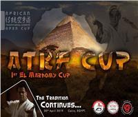 مصر تنظم كأس أفريقيا المفتوحة للكاراتيه التقليدي