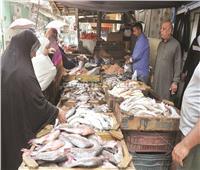 أسعار السمك نار.. والركود سيد الموقف في أسواق القاهرة والإسكندرية