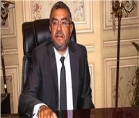 النائب عماد سعد حمودة: التعديلات الدستورية لتحقيق الاستقرار السياسي