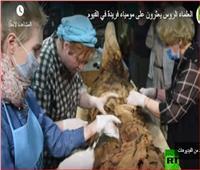 فيديو| العلماء الروس يعثرون على مومياء فريدة في الفيوم
