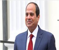 «السيسي» يشهد مراسم تفتيش حرب بقاعدة محمد نجيب العسكرية.. اليوم