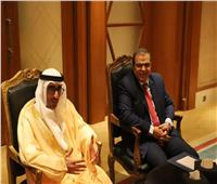 وزير الموارد البشرية الإماراتي: العمالة المصرية بالإمارات مصونة