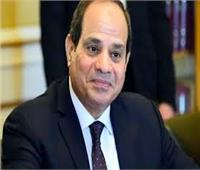 بسام راضي: «السيسي» يتفقد إجراءات التفتيش ورفع الكفاءة القتالية بقاعدة محمد نجيب