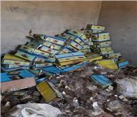 صور| «تموين الجيزة»: ضبط 3 طن تمر هندي فاسد بمصنع بأطفيح