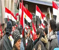 اتحاد المصريين بالسعودية يؤيد التعديلات الدستورية
