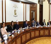 الحكومة تحسم الجدل بشأن إجازة أيام الاستفتاء على التعديلات الدستورية