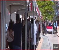 فيديو| السفارات والقنصليات تستعد لاستقبال الناخبين في الاستفتاء على التعديلات الدستورية