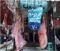 «بيطري المنوفية»: تفعيل غرف عمليات بالمراكز لاستقبال الشكاوى فى شم النسيم