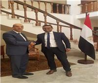 سفيرنا بأديس أبابا و«ميهريتو» يبحثان تنشيط التعاون الاقتصادي مع إثيوبيا