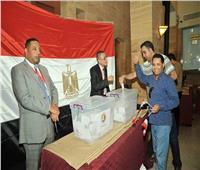 سفير مصر بألمانيا: الاستفتاء يسير بشكل جيد وسط أجواء إيجابية
