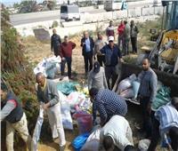 صور| توزيع 2190 جوال رمال أمام 73 مقرا انتخابيا وسط الإسكندرية