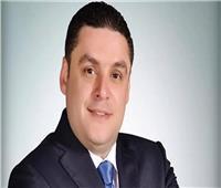 خارجية النواب: مشاركة المصريين بالخارج في الاستفتاء «صورة مبهجة»