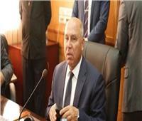 غدا.. وزير النقل يدلي بصوته في «التعديلات الدستورية» بالتجمع