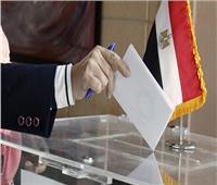 9 أخطاء تُبطل «صوتك» أثناء عملية التصويت على التعديلات الدستورية