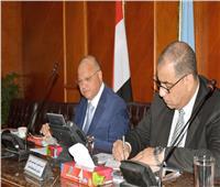محافظ القاهرة يتابع سير الاستفتاء على التعديلات الدستورية