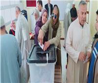 التعديلات الدستورية 2019| «الوزراء» يساعد كفيفا بالبحيرة على التصويت بالاستفتاء
