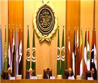 «أبو الغيط»: الدعم العربي للقضية الفلسطينية ثابت لا يتزعزع