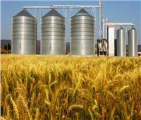 توريد ٢٣٤٩ طنا من القمح لصوامع بالشرقية