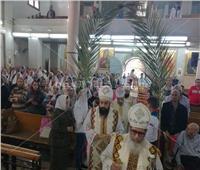 صور| كنائس السويس تحتفل بأحد الشعانين برفع سعف النخيل