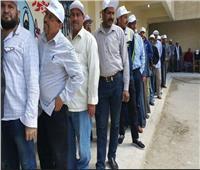 بـ«الكابات البيضاء».. عمال أسمنت السويس يدلون بأصواتهم في الاستفتاء
