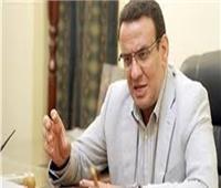 حسب الله: نتائج الاستفتاء على التعديلات الدستورية ستؤكد للعالم عظمة المصريين