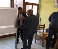 التعديلات الدستورية 2019| رئيس لجنة يساعد «مسن» للإدلاء بصوته في المنيل