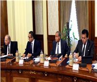 الحكومة: تخصيص مساحات أراضي ملكية محافظة قنا لصالح وزارة التموين