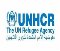 الأمم المتحدة: فحص فيروس سي مجانا لـ11 ألف لاجئ بالأراضي المصرية