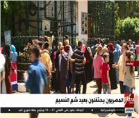 بث مباشر  المصريون يحتفلون بأعياد شم النسيم