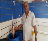 أقدم «فسخاني» بالبحر الأحمر يكشف أسرار صناعة الفسيخ