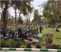 شم النسيم 2019| الفسيخ يغزو حدائق القناطر احتفالا بأعياد الربيع