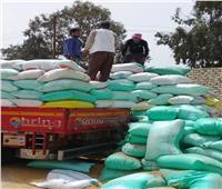 توريد ٩٠ ألف و٤٢١ طنا من القمح لصوامع وشون الشرقية