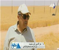 فيديو  وزير الزراعة: حصاد 30 فدان قمح يوميا بمشروع غرب المنيا