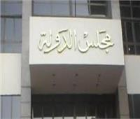 تأجيل دعوى إلزام «القومي لحقوق الإنسان» بإيقاف ناصر أمين لـ15 يونيو