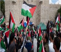 فلسطين تدعو الأمم المتحدة للتدخل لوقف العدوان الإسرائيلي على غزة