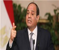 السيسي يلتقي رئيس البنك الدولي.. و«مالباس» يشيد بصلابة المصريين