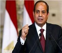الرئيس السيسي يؤكد دعم مصر لكافة المبادرات الهادفة لتطوير التنمية في أفريقيا