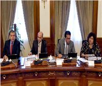 الحكومة: تعديل مسمى معهد الدراسات والبحوث الإحصائية بجامعة القاهرة